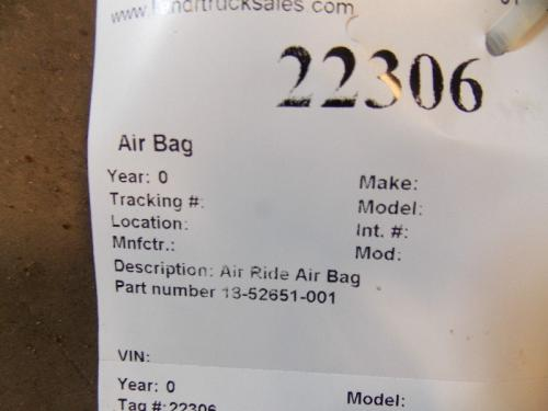 Air Bag (Safety)