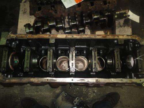 INTERNATIONAL DT466NGD Cylinder Block