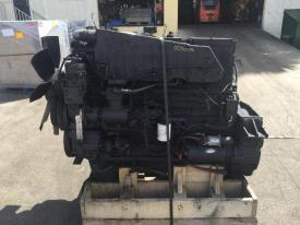 CUMMINS 444 Engine Assembly