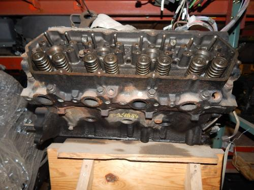 INTERNATIONAL  Cylinder Block